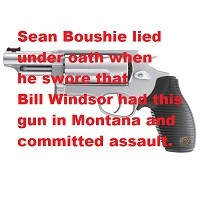 Criminal Charges against Sean Boushie: False Swearing, Perjury, False Police Report: Bill Windsor has a gun - Count 2